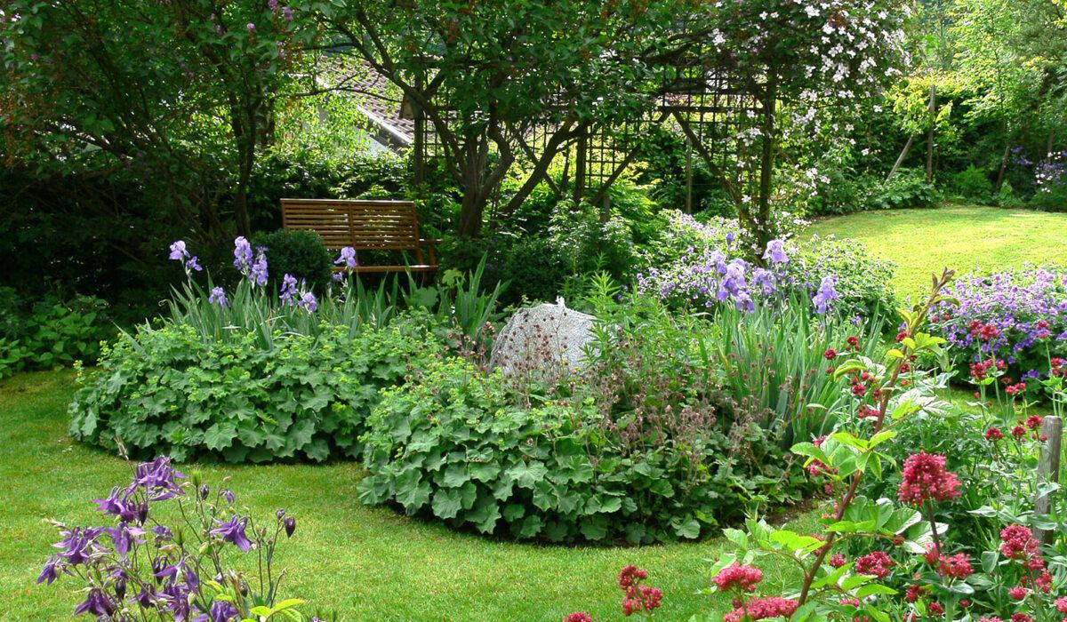 Blick in einen Naturgarten